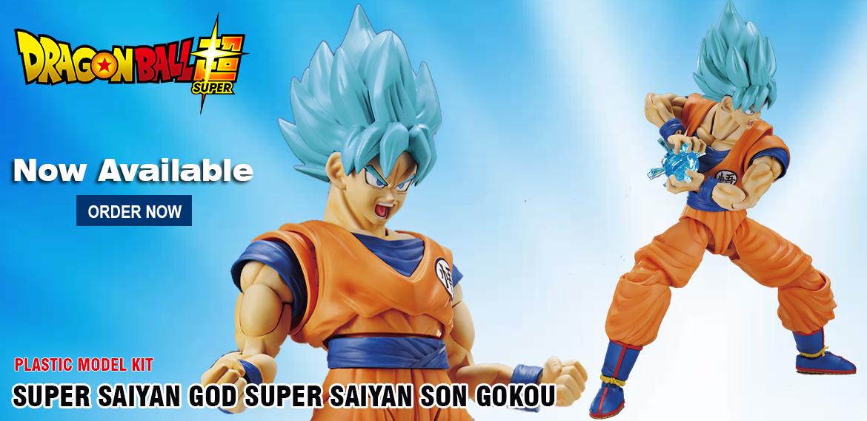 Super Saiyan God Super Son Gokou